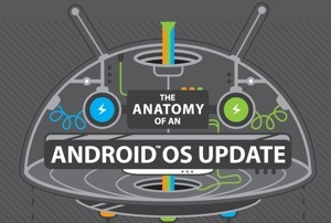 HTC infographic shows the tedious process of Android update
