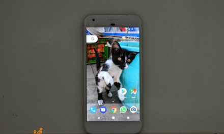 Top 5 Google Pixel XL Tips and Tricks to Make Most of Your Smartphone